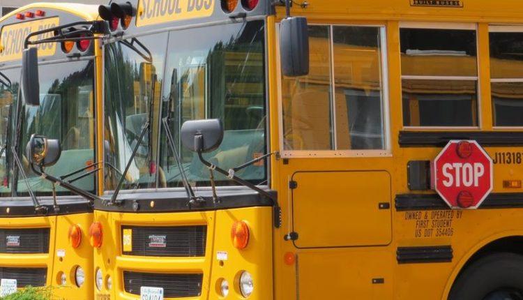 Schoolbus2_tuohy.JPG